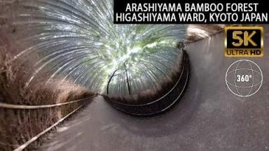 Vr360 5K - Arashiyama Bamboo Forest Travel Tour - Kyoto Japan - GoPro Fusion Max