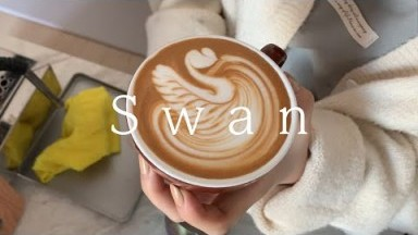 Basic Latte Art Swan for beginner barista, Barista Joy, Home cafe