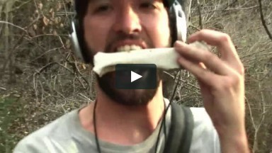 KDOG'S AUSTIN VLOG 2: SECRET BEACHES AND GHOST ZOOS