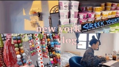 Newjersey|newyork|vlog|뉴욕브이로그|뉴저지브이로그|뉴욕댄서|코로나검사|뉴욕폭설