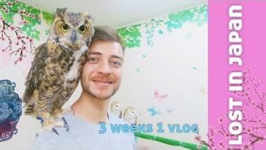 Lost In Japan Travel Vlog