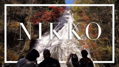 Searching for Autumn Colors in Nikko | Cinematic Japan Travel Vlog (Day 1)
