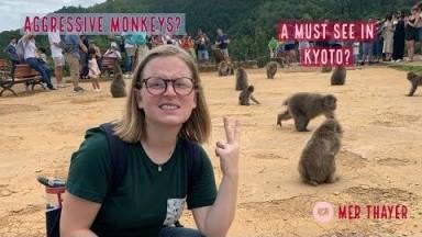 KYOTO'S MONKEY PARK: IS IT WORTH IT? // Kyoto, Japan Travel Vlog