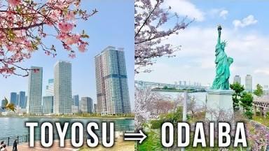 SUB) Bicycle Trip from Toyosu to Odaiba, Tokyo Japan | Toyosu Market | Odaiba Marine Park【Vlog】