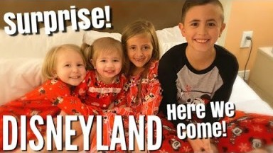 OUR EPIC SURPRISE FAMILY TRIP TO DISNEYLAND!! / How'd We Keep This Secret From Them for Two Months!?