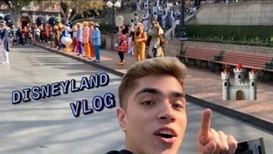 Disneyland Vlog But Make It Crackhead