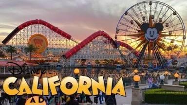 Disney California Adventure Vlog January 2020
