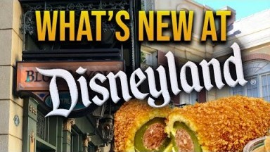 Disneyland News | Rumors, new food, and new places to drink!