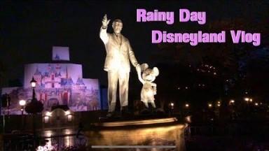 A Rainy Day Disneyland Vlog