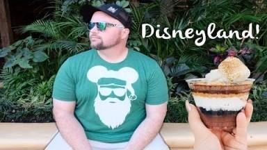 Disneyland |At the parks |Vlog #12
