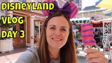 Disneyland Vlog Day 3 -Downtown Disney, Disneyland Hotel and More! - Magical Mondays #103